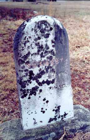 SIBERT, LOUISA - Meigs County, Ohio | LOUISA SIBERT - Ohio Gravestone Photos