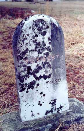 JOHNSON SIBERT, LOUISA - Meigs County, Ohio | LOUISA JOHNSON SIBERT - Ohio Gravestone Photos