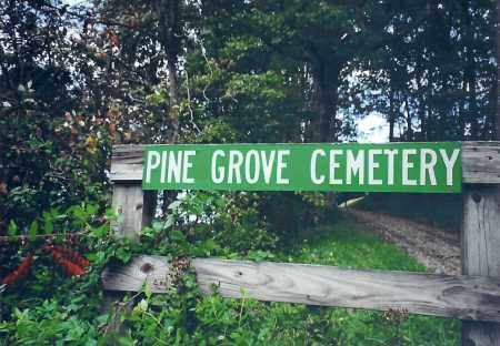 PINE GROVE CEMETERY, SIGN - Meigs County, Ohio | SIGN PINE GROVE CEMETERY - Ohio Gravestone Photos