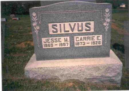 BRATTON SILVUS, CARRIE E. - Meigs County, Ohio | CARRIE E. BRATTON SILVUS - Ohio Gravestone Photos