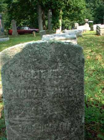 SIMMS, ALONZO - Meigs County, Ohio   ALONZO SIMMS - Ohio Gravestone Photos