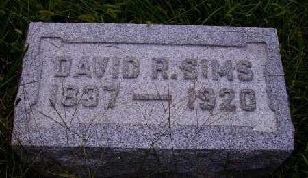 SIMS, DAVID R. - Meigs County, Ohio | DAVID R. SIMS - Ohio Gravestone Photos