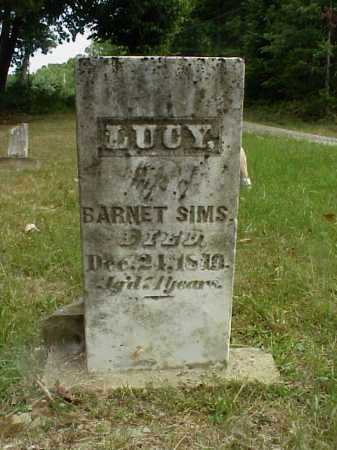 SIMS, LUCY - Meigs County, Ohio | LUCY SIMS - Ohio Gravestone Photos