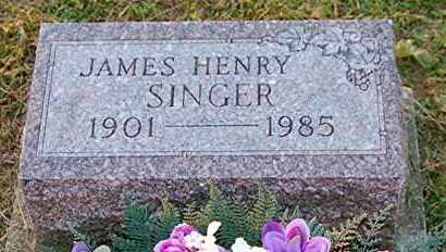 SINGER, JAMES HENRY - Meigs County, Ohio | JAMES HENRY SINGER - Ohio Gravestone Photos