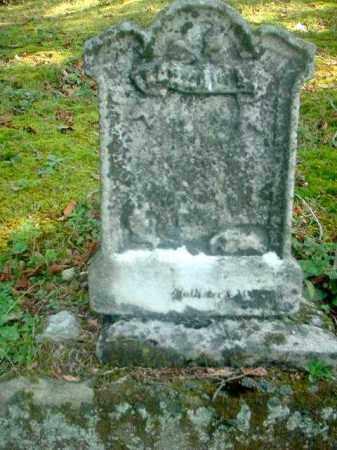SKINNER, EDWARD - Meigs County, Ohio   EDWARD SKINNER - Ohio Gravestone Photos