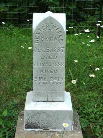 SMITH, DEXTER MERLE - Meigs County, Ohio   DEXTER MERLE SMITH - Ohio Gravestone Photos