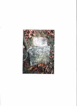 SPENCER, LYDIA ANN - Meigs County, Ohio | LYDIA ANN SPENCER - Ohio Gravestone Photos