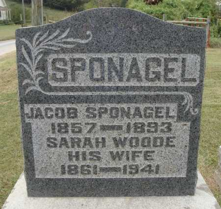 SPONAGEL, SARAH - Meigs County, Ohio | SARAH SPONAGEL - Ohio Gravestone Photos