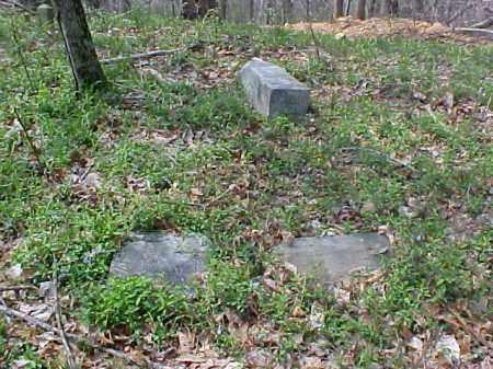 ST. JOHNS, WEST VIEW - Meigs County, Ohio | WEST VIEW ST. JOHNS - Ohio Gravestone Photos