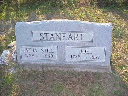 STILL STANEART, LYDIA - Meigs County, Ohio | LYDIA STILL STANEART - Ohio Gravestone Photos