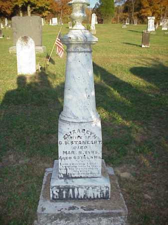 STANEART MONUMENT, ELIZABETH - Meigs County, Ohio | ELIZABETH STANEART MONUMENT - Ohio Gravestone Photos