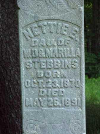STEBBINS, NETTIE E. - Meigs County, Ohio   NETTIE E. STEBBINS - Ohio Gravestone Photos