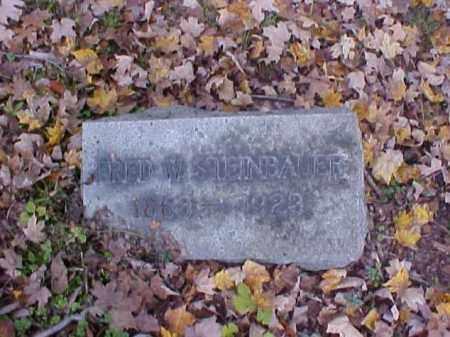 STEINBAUER, FRED W. - Meigs County, Ohio | FRED W. STEINBAUER - Ohio Gravestone Photos