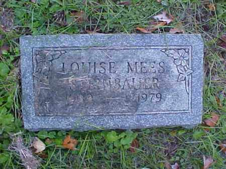 STEINBAUER, LOUISE - Meigs County, Ohio | LOUISE STEINBAUER - Ohio Gravestone Photos