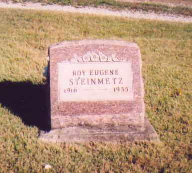 STEINMETZ, ROY EUGENE - Meigs County, Ohio | ROY EUGENE STEINMETZ - Ohio Gravestone Photos