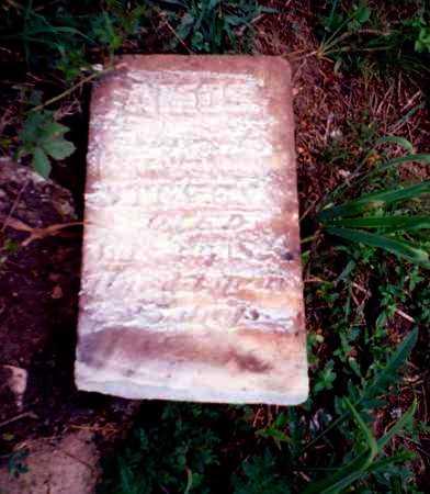 STEVENS, AMOS - Meigs County, Ohio   AMOS STEVENS - Ohio Gravestone Photos