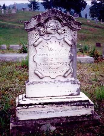 STEVENS, AVALINE T. - Meigs County, Ohio | AVALINE T. STEVENS - Ohio Gravestone Photos