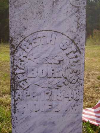 DOWNARD STILES, ELIZABETH - Meigs County, Ohio | ELIZABETH DOWNARD STILES - Ohio Gravestone Photos