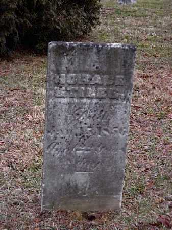 STILES, HORACE - Meigs County, Ohio | HORACE STILES - Ohio Gravestone Photos