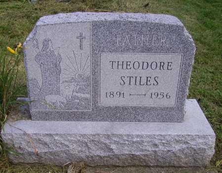 STILES, THEODORE - Meigs County, Ohio | THEODORE STILES - Ohio Gravestone Photos