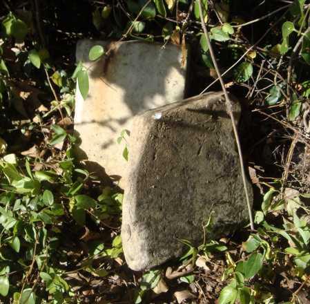 STONES, UNREADABLE - Meigs County, Ohio | UNREADABLE STONES - Ohio Gravestone Photos