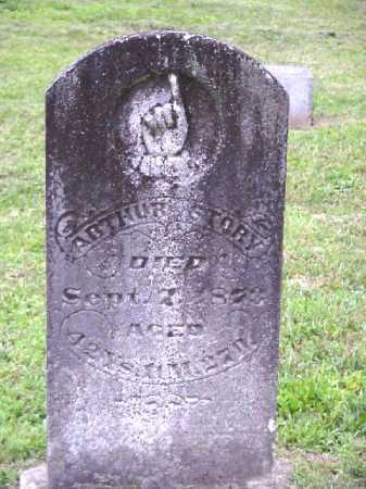 STORY, ARTHUR - Meigs County, Ohio | ARTHUR STORY - Ohio Gravestone Photos
