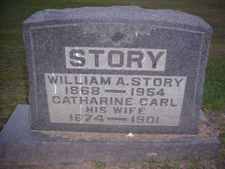 STORY, CATHARINE - Meigs County, Ohio | CATHARINE STORY - Ohio Gravestone Photos