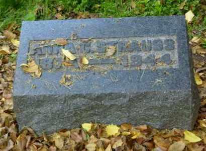 STRAUSS, ANNA CHRISTINA - Meigs County, Ohio | ANNA CHRISTINA STRAUSS - Ohio Gravestone Photos