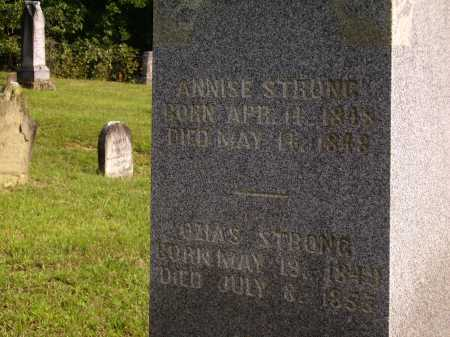 STRONG, ANNISE - Meigs County, Ohio   ANNISE STRONG - Ohio Gravestone Photos