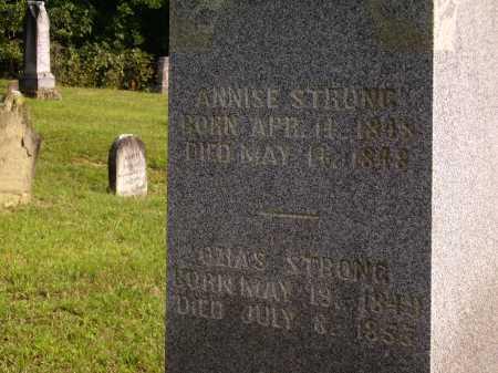 STRONG, OZIAS - Meigs County, Ohio | OZIAS STRONG - Ohio Gravestone Photos