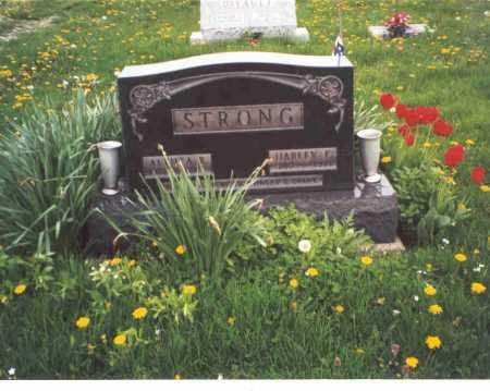 STRONG, HARLEY E. - Meigs County, Ohio | HARLEY E. STRONG - Ohio Gravestone Photos