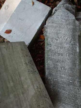 SWARTZ, C.F. - Meigs County, Ohio   C.F. SWARTZ - Ohio Gravestone Photos