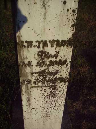 TAYLOR, J.W. - Meigs County, Ohio | J.W. TAYLOR - Ohio Gravestone Photos