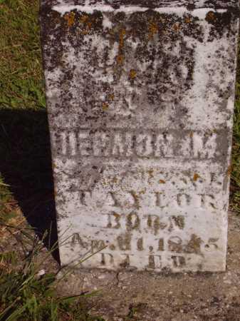 TAYLOR, HERMON M. - Meigs County, Ohio   HERMON M. TAYLOR - Ohio Gravestone Photos