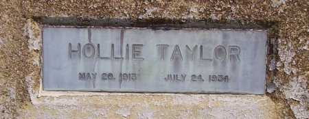 TAYLOR, HOLLIE - CLOSEVIEW - Meigs County, Ohio | HOLLIE - CLOSEVIEW TAYLOR - Ohio Gravestone Photos