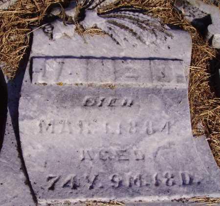 AGNEW  TAYLOR, JANE D. - Meigs County, Ohio   JANE D. AGNEW  TAYLOR - Ohio Gravestone Photos