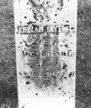 TAYLOR, KEZIAH - Meigs County, Ohio | KEZIAH TAYLOR - Ohio Gravestone Photos