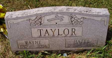 TAYLOR, WAYNE - Meigs County, Ohio | WAYNE TAYLOR - Ohio Gravestone Photos