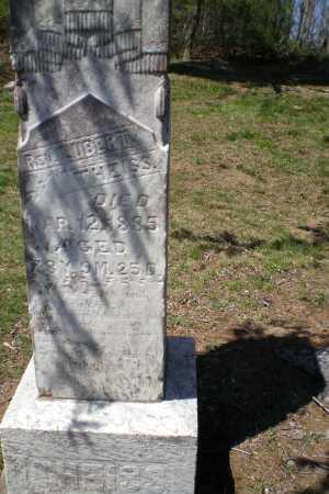 THEISS, LUBERT REV. - Meigs County, Ohio | LUBERT REV. THEISS - Ohio Gravestone Photos