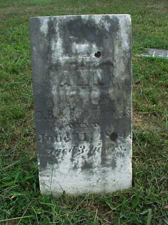 THOMAS, ANN - Meigs County, Ohio | ANN THOMAS - Ohio Gravestone Photos