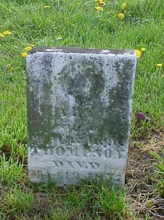 THOMPSON, ANN - Meigs County, Ohio | ANN THOMPSON - Ohio Gravestone Photos