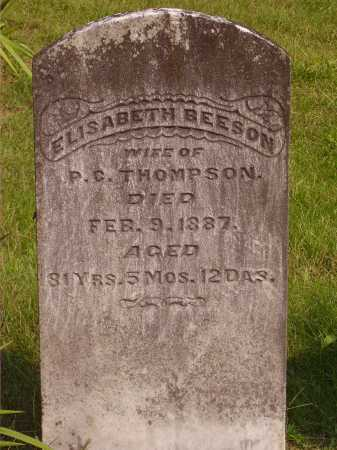 THOMPSON, ELISABETH - Meigs County, Ohio | ELISABETH THOMPSON - Ohio Gravestone Photos