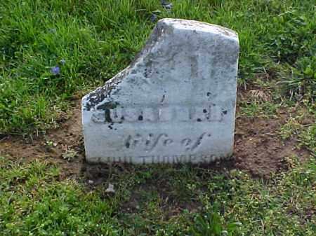 THOMPSON, SUSANNAH - Meigs County, Ohio | SUSANNAH THOMPSON - Ohio Gravestone Photos