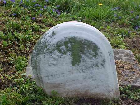 THOMPSON, THOMAS - Meigs County, Ohio | THOMAS THOMPSON - Ohio Gravestone Photos