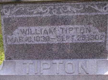 TIPTON, WILLIAM - CLOSEVIEW - Meigs County, Ohio | WILLIAM - CLOSEVIEW TIPTON - Ohio Gravestone Photos