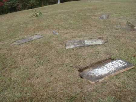 TUBBS, CAROLINE - Meigs County, Ohio | CAROLINE TUBBS - Ohio Gravestone Photos