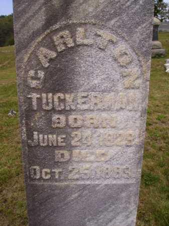 TUCKERMAN, CARLTON - Meigs County, Ohio   CARLTON TUCKERMAN - Ohio Gravestone Photos