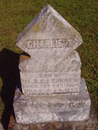 TURNER, CHARLIE T. - Meigs County, Ohio | CHARLIE T. TURNER - Ohio Gravestone Photos