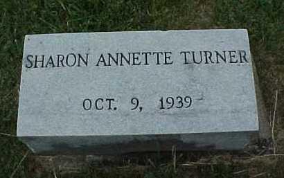 TURNER, SHARON ANNETTE - Meigs County, Ohio   SHARON ANNETTE TURNER - Ohio Gravestone Photos