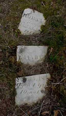UNKNOWN, AMANDA - Meigs County, Ohio   AMANDA UNKNOWN - Ohio Gravestone Photos